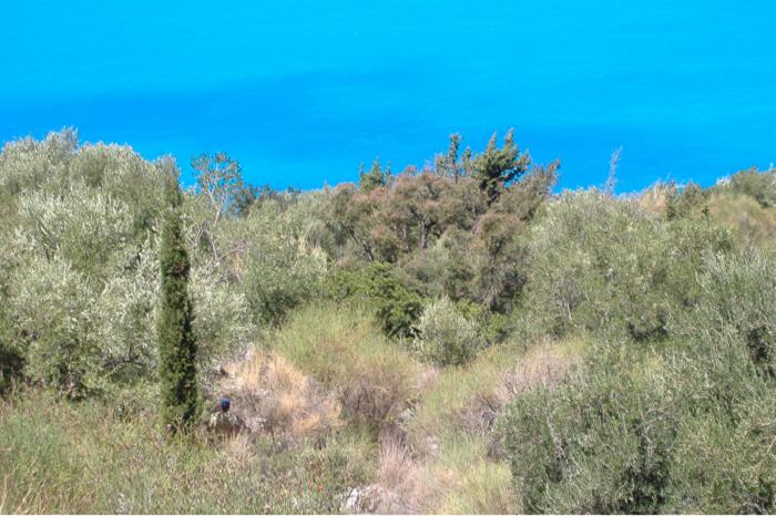 Veduta dall'alto del mare di Kalamitzi, Lefkada