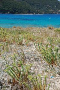 Spiaggia di lefkada città, ghira, Lefkada